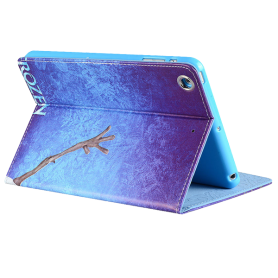 Capa Frozen Ipad Mini